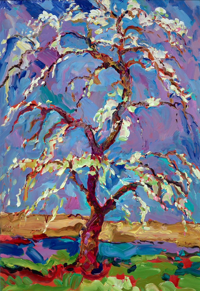 Ancient Victoria Plum Tree, Foxhill Orchard by jeffrey pratt -  sized 27x39 inches. Available from Whitewall Galleries